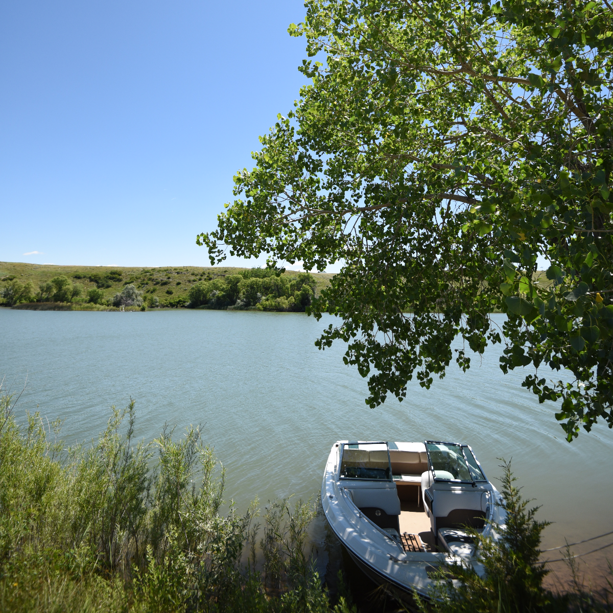 /userdocs/Sheps Canyon Recreation Area